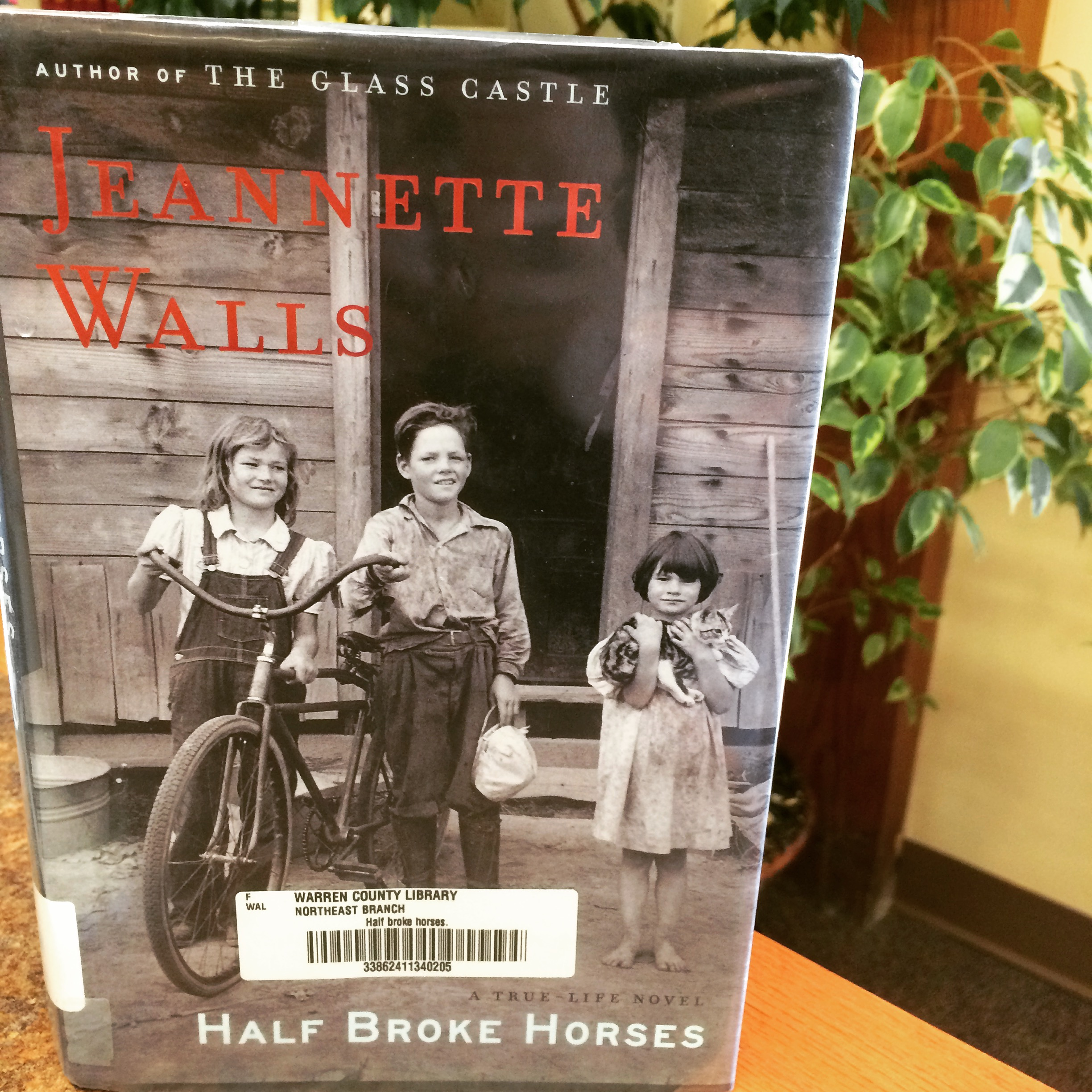 a grandmothers perspective in half broke horses a novel by jeannette walls Gender in cross-cultural perspective brettell, caroline: author  viewing the novel/reading the film flavin, louise  holding up more than half the sky jinxia.